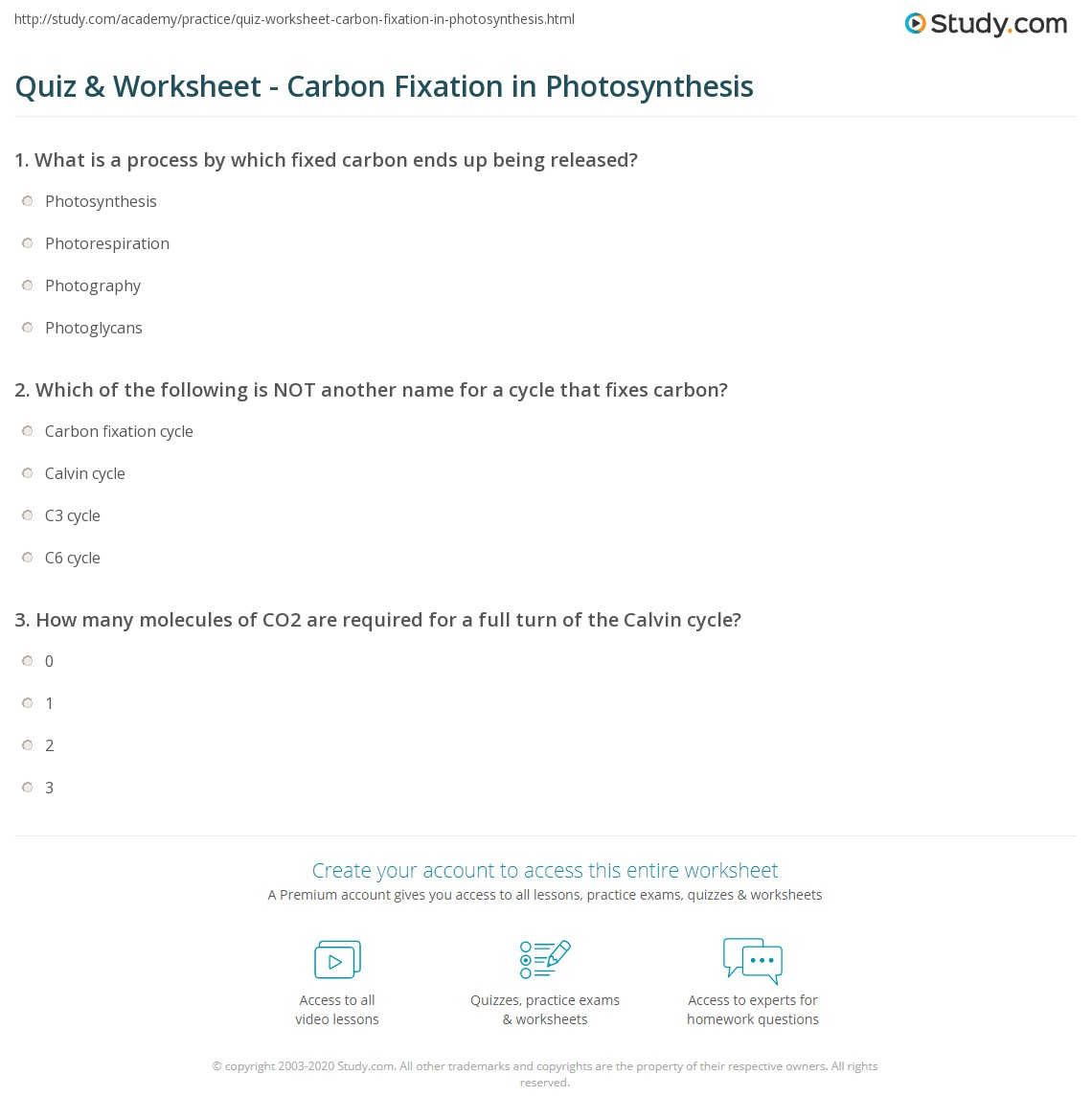 photosynthesis homework help quiz amp worksheet carbon fixation in photosynthesis study com