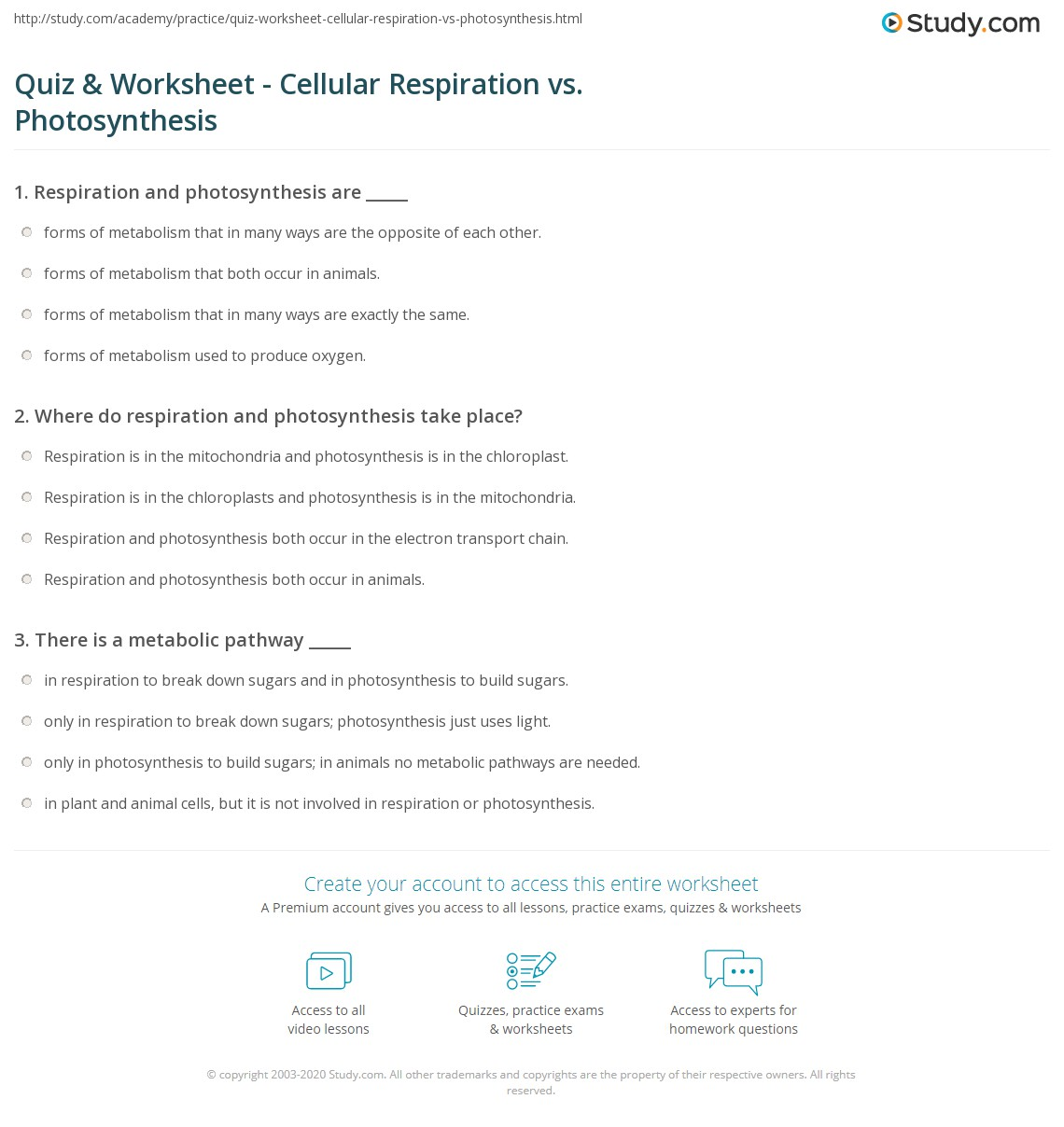 Quiz Worksheet Cellular Respiration vs Photosynthesis – Cellular Respiration Worksheets