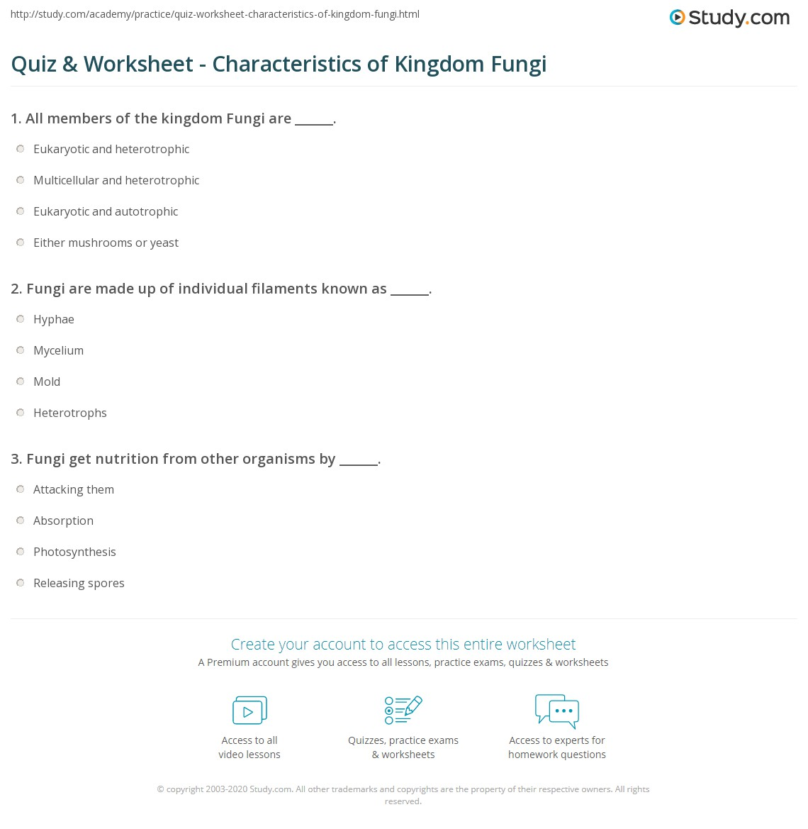 Quiz Worksheet Characteristics of Kingdom Fungi – Fungi Worksheet