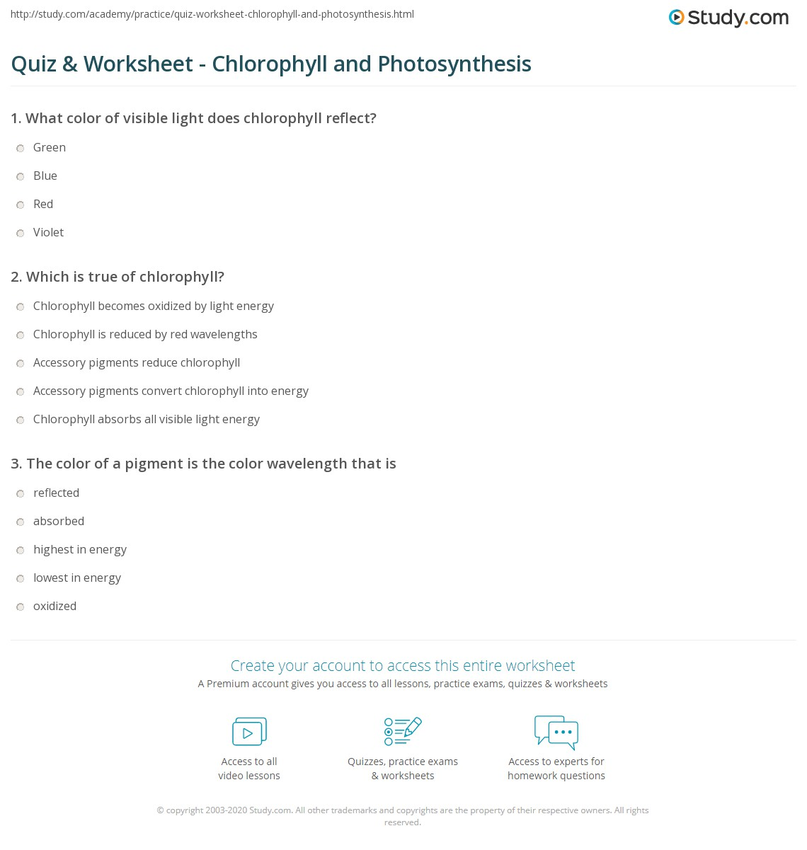 Quiz Worksheet Chlorophyll and Photosynthesis – Photosynthesis Review Worksheet Answers