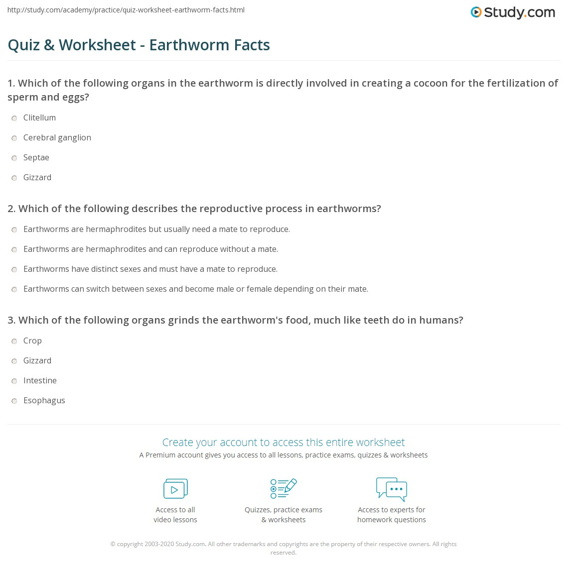 Quiz Worksheet Earthworm Facts – Earthworm Worksheet Answers