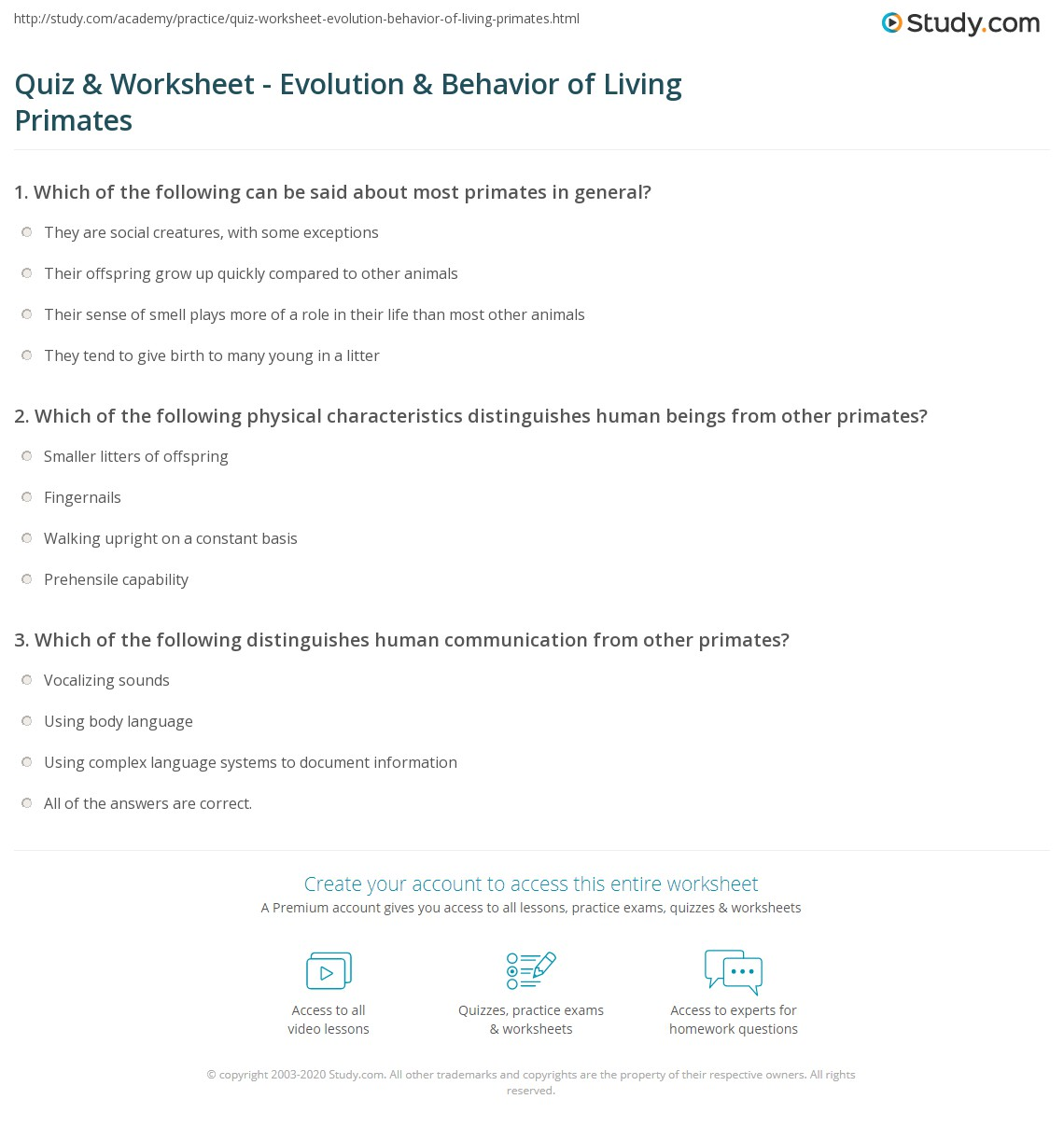 Quiz Worksheet Evolution Behavior of Living Primates – Evolution Worksheet