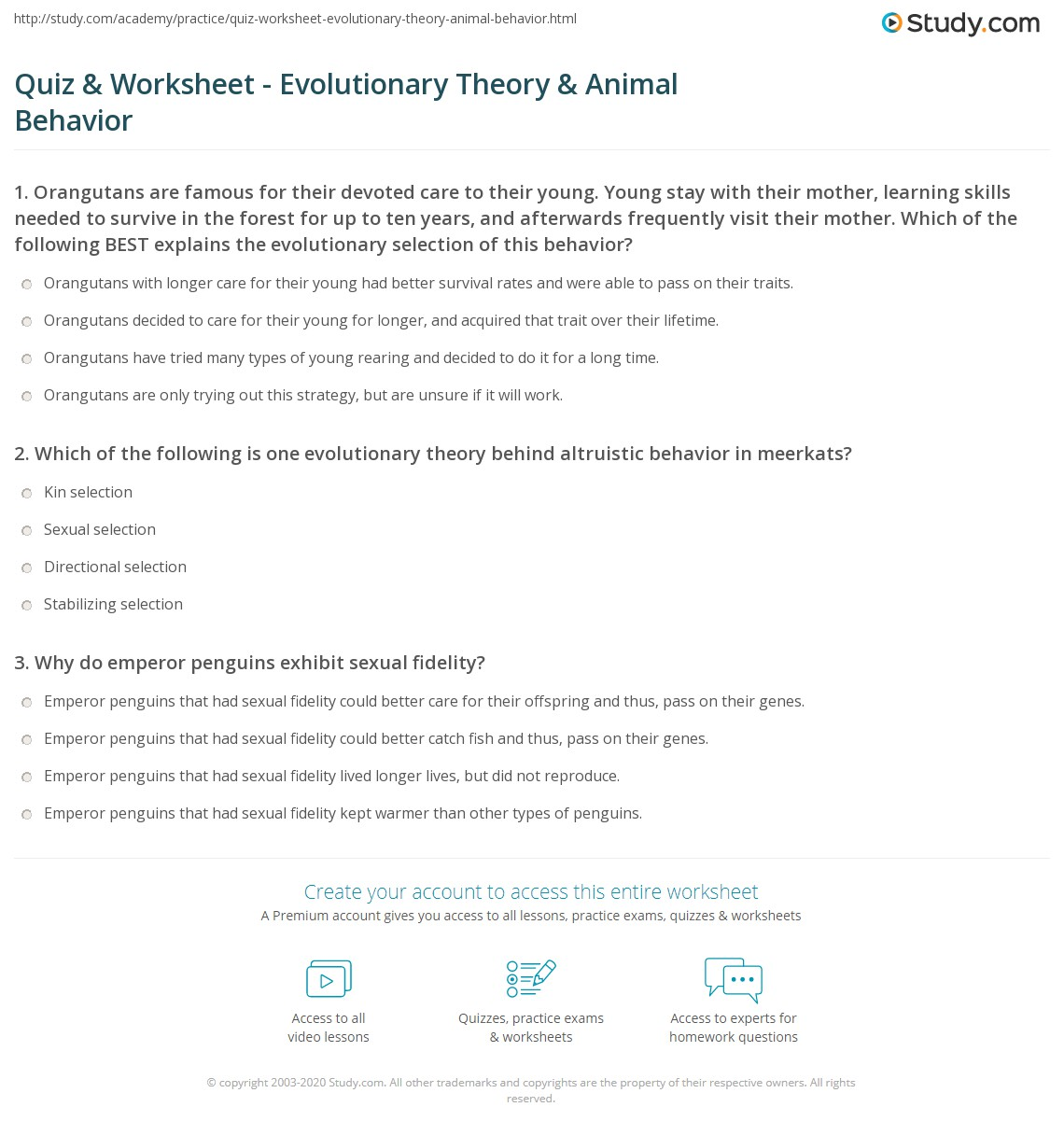 quiz worksheet evolutionary theory animal behavior. Black Bedroom Furniture Sets. Home Design Ideas