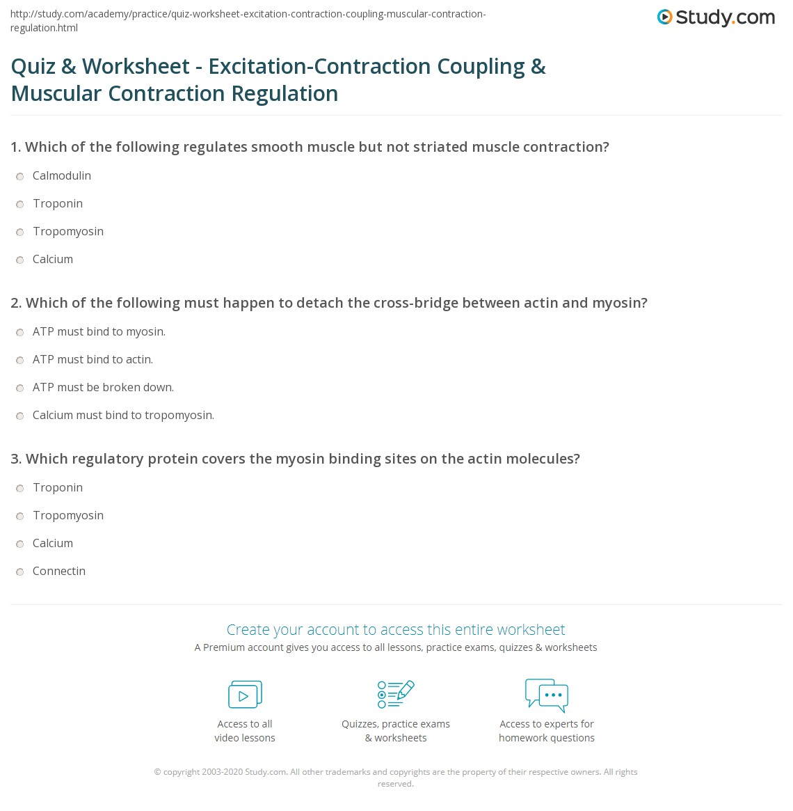 quiz & worksheet - excitation-contraction coupling & muscular, Muscles