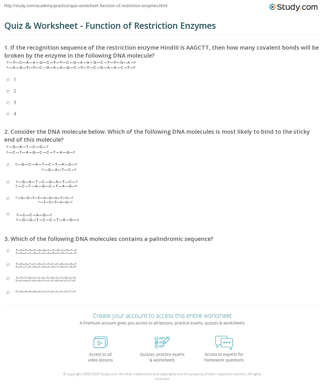 {Quiz Worksheet Function of Restriction Enzymes – Restriction Enzyme Worksheet