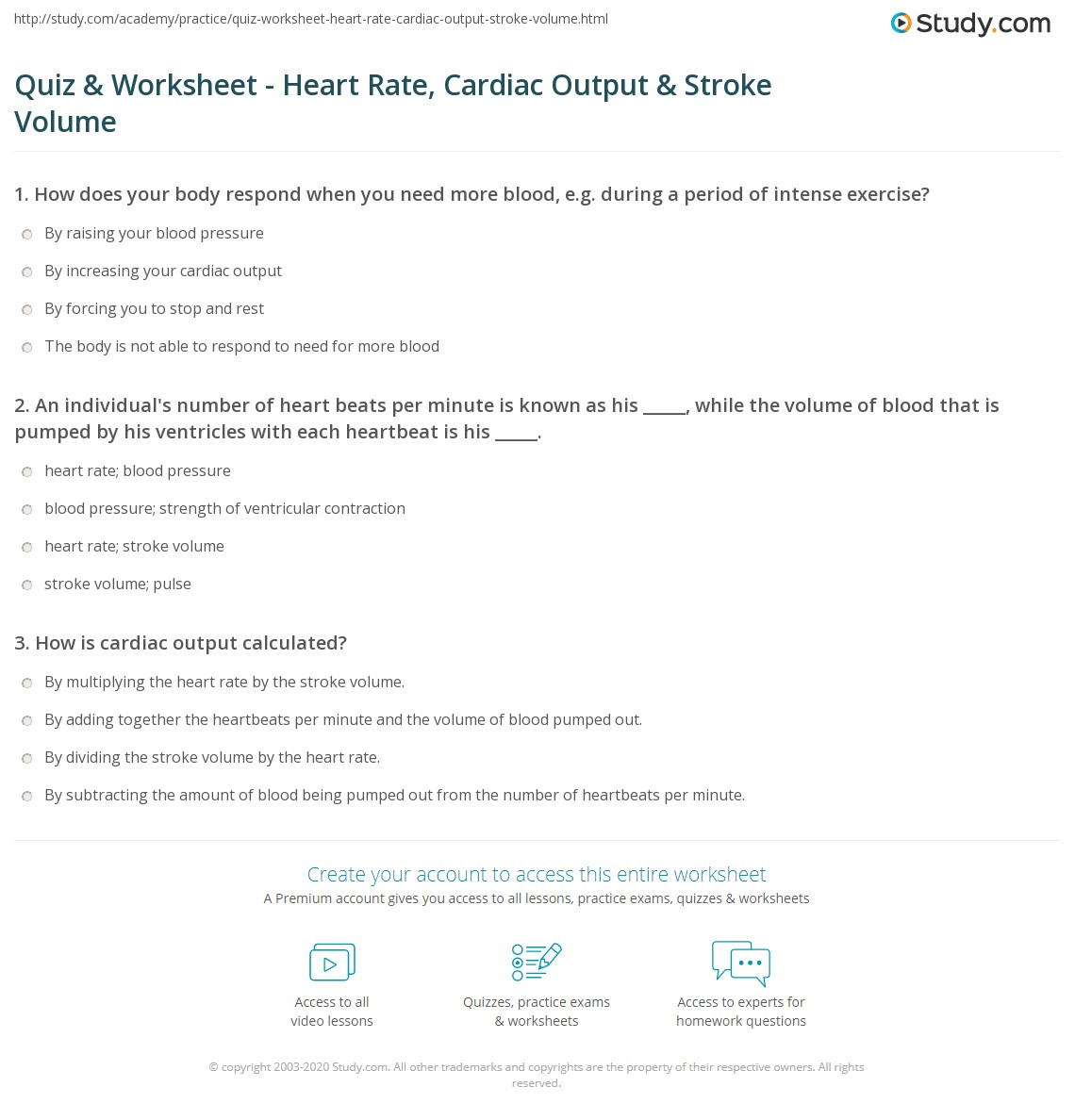 Quiz Worksheet Heart Rate Cardiac Output Stroke Volume – Target Heart Rate Worksheet