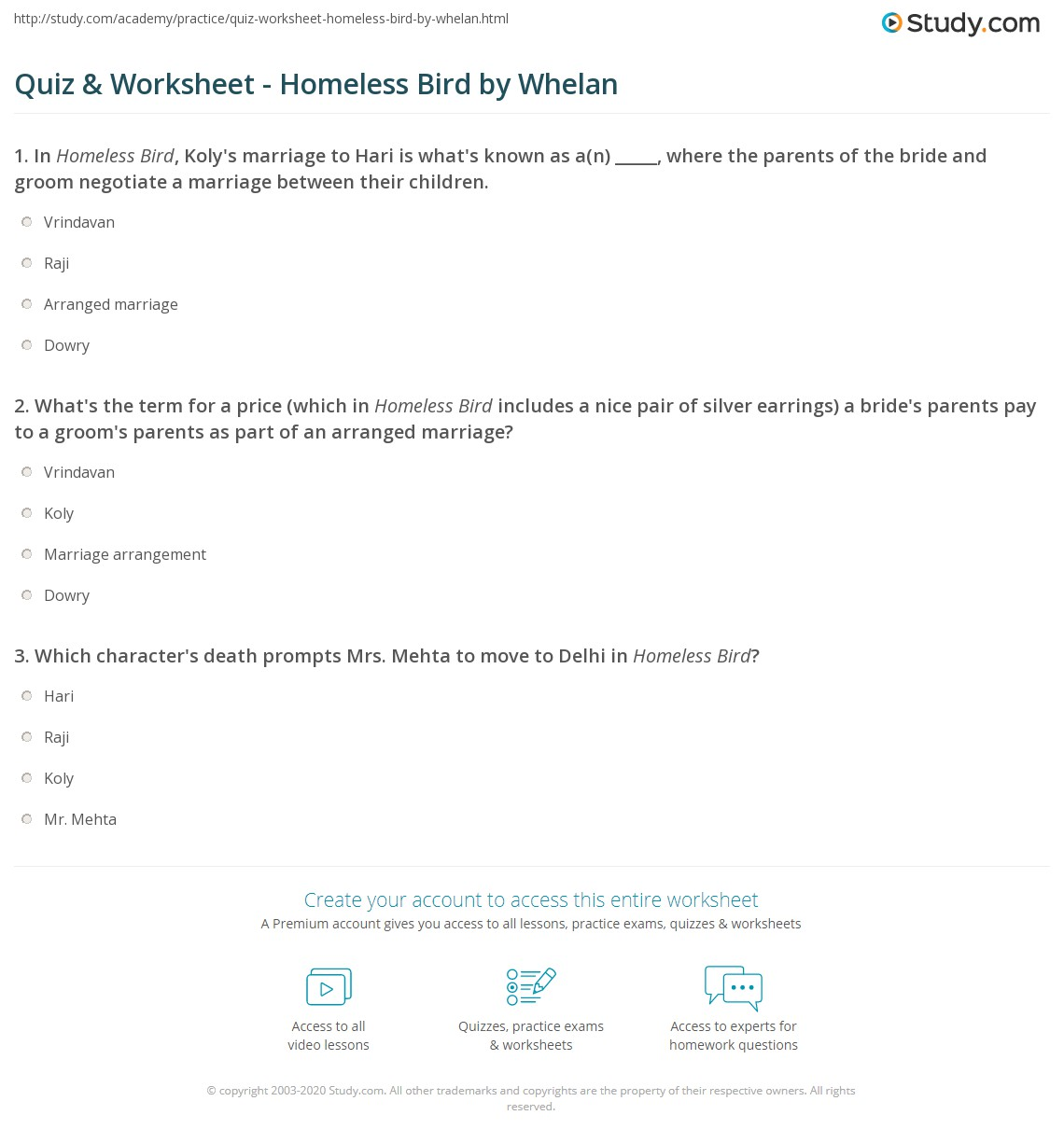 Quiz Worksheet Homeless Bird By Whelan Study Com
