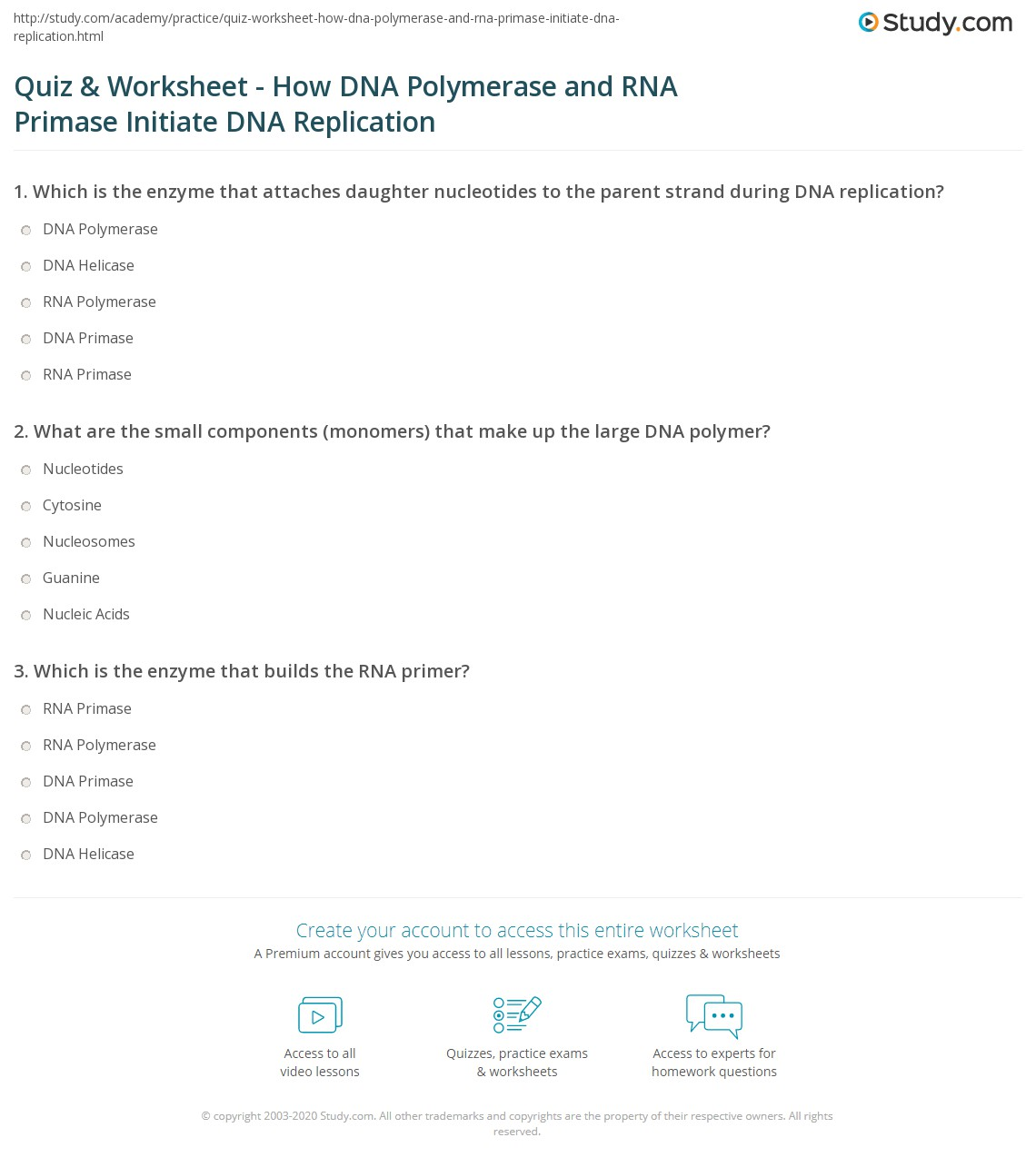 Quiz Worksheet How DNA Polymerase and RNA Primase Initiate DNA – Dna Replication Activity Worksheet
