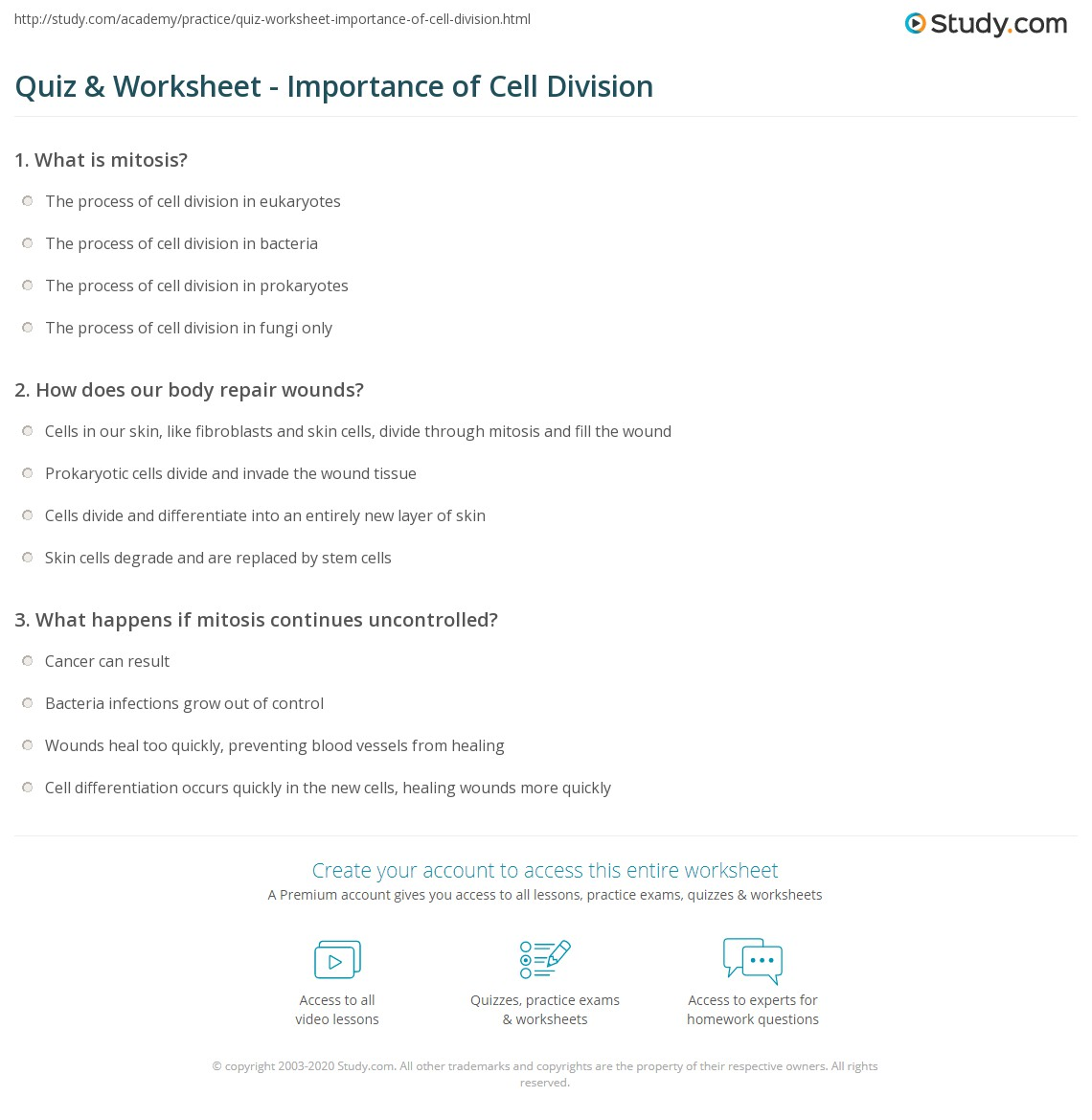 Cell Division And Mitosis Worksheet Answers cell division – Cell Cycle Worksheet Answer Key