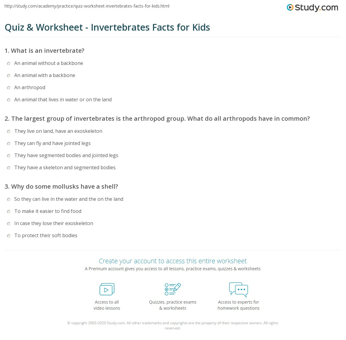 Quiz & Worksheet - Invertebrates Facts for Kids  Study.com multiplication, grade worksheets, worksheets for teachers, free worksheets, learning, and math worksheets Vertebrates And Invertebrates Worksheets For Kids 2 1418 x 1140