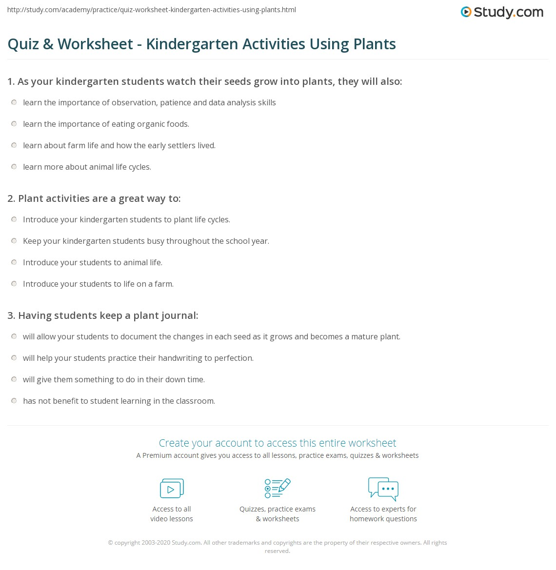 Quiz and Worksheet Kindergarten Activities Using Plants – Kindergarten Plant Worksheets