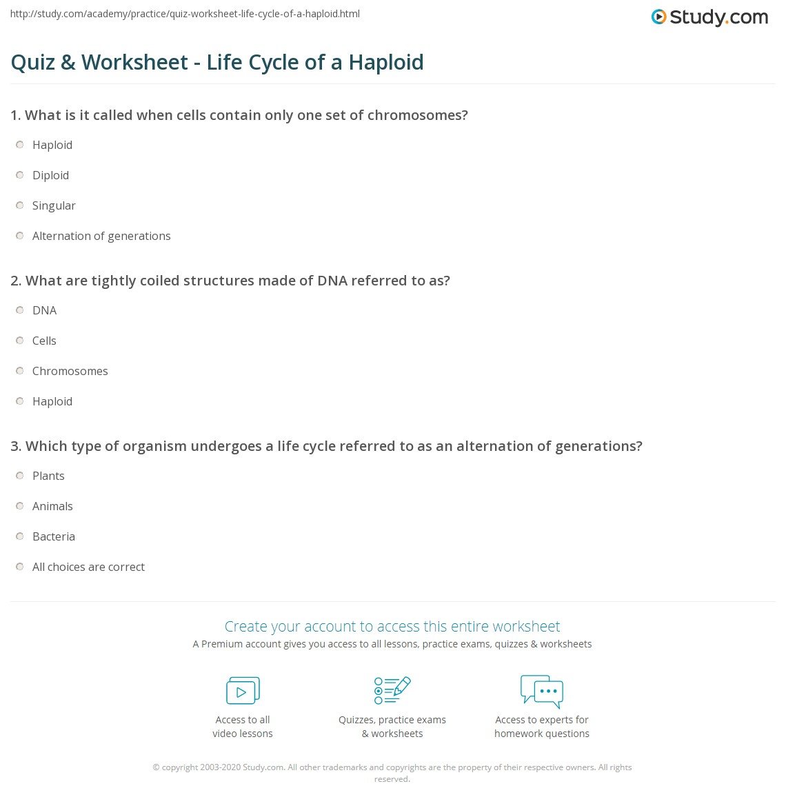 Worksheets Number Of Chromosomes Worksheet number of chromosomes worksheet mysticfudge what is the definition haploid