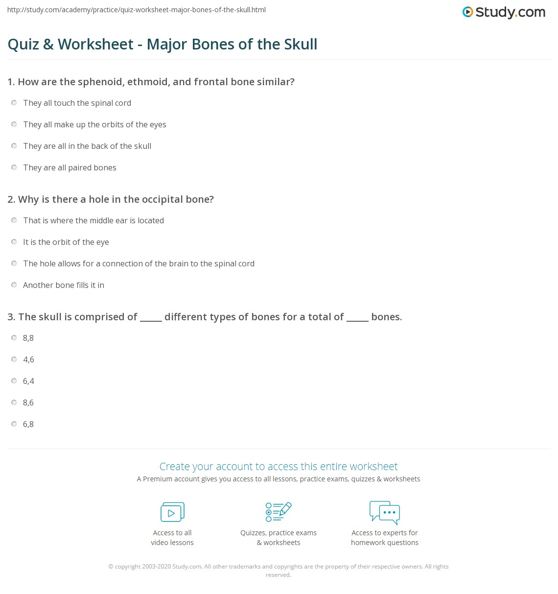 Quiz & Worksheet - Major Bones of the Skull  Study.com