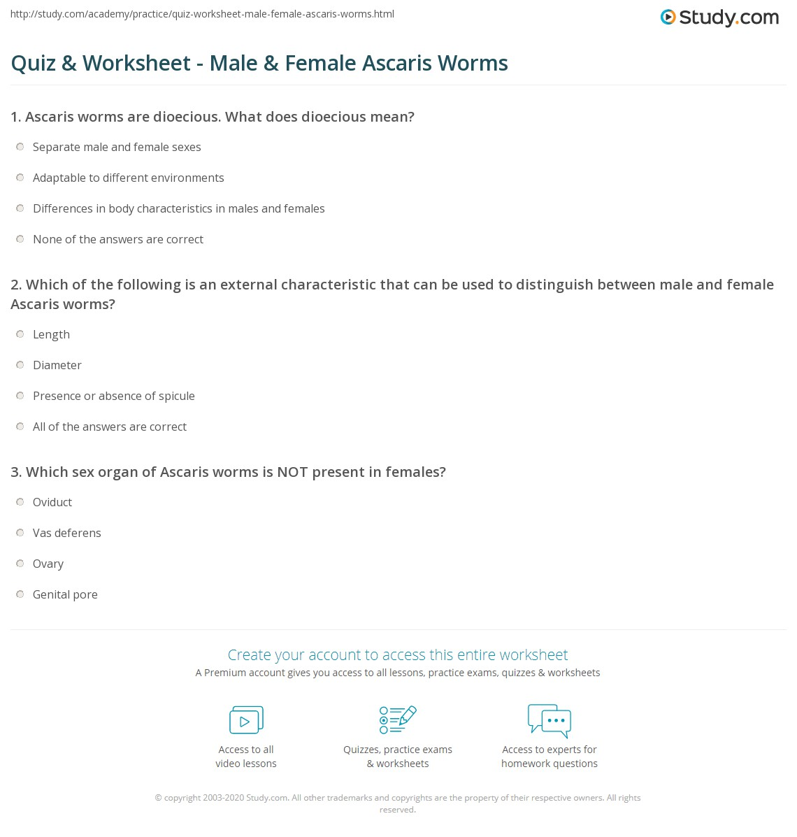 Quiz & Worksheet - Male & Female Ascaris Worms
