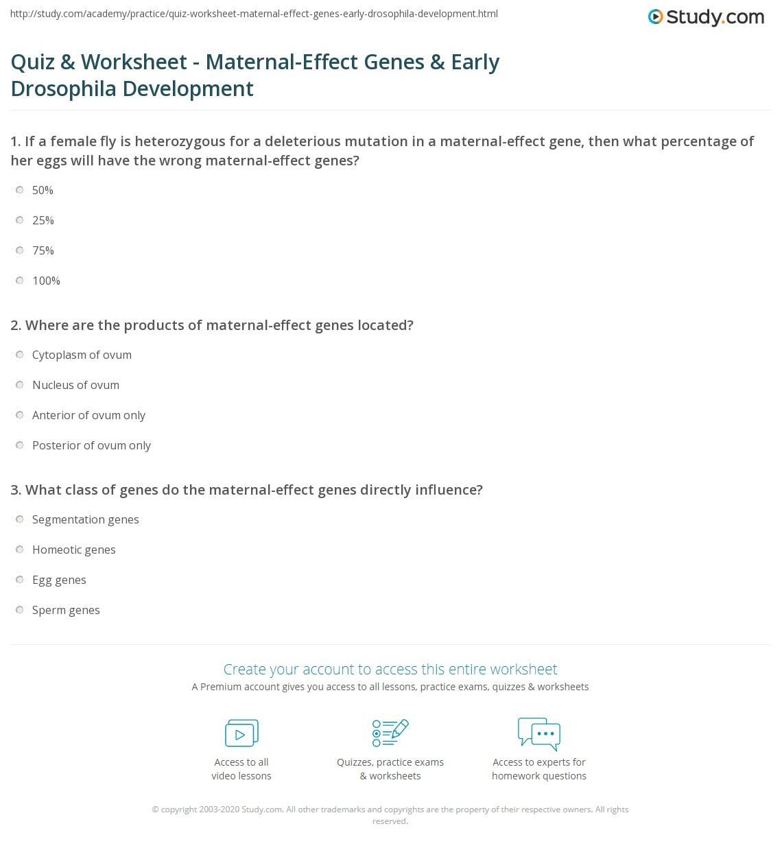 Quiz Worksheet MaternalEffect Genes Early Drosophila – Gene Mutation Worksheet