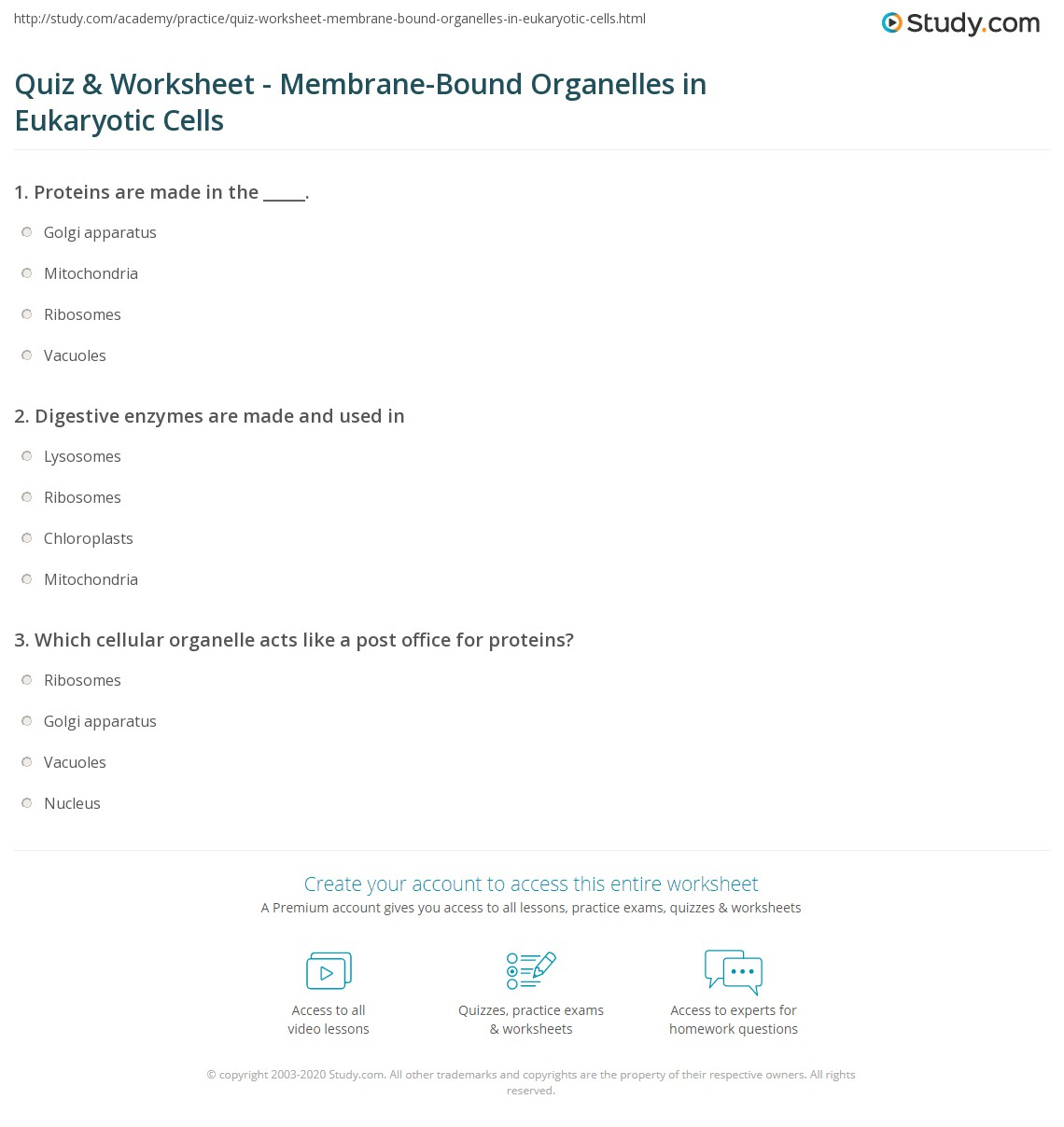 Worksheets Cell Organelles Worksheet Answer Key quiz worksheet membrane bound organelles in eukaryotic cells print worksheet