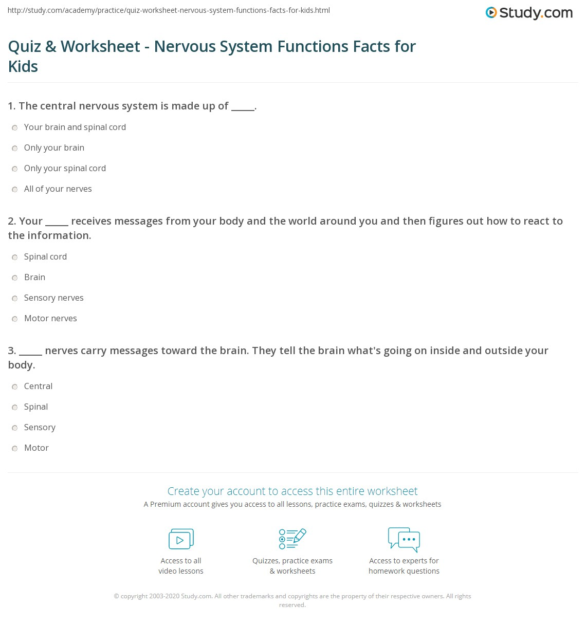 nervous system multiple choice questions and answers pdf