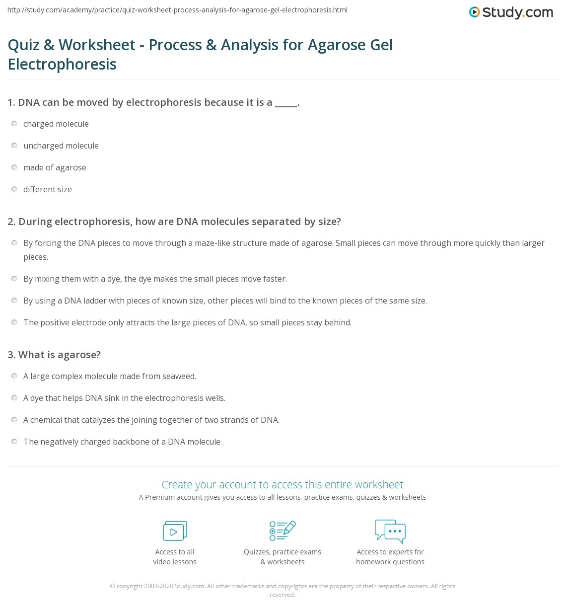 Quiz & Worksheet - Process & Analysis for Agarose Gel ...