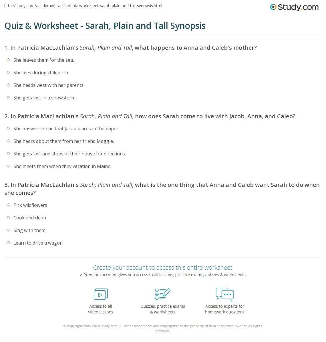 Quiz Worksheet Sarah Plain and Tall Synopsis – Sarah Plain and Tall Worksheets