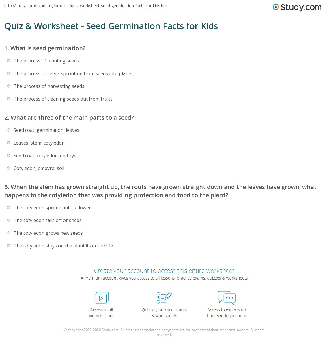 Uncategorized Parts Of A Seed Worksheet quiz worksheet seed germination facts for kids study com print of seeds lesson worksheet