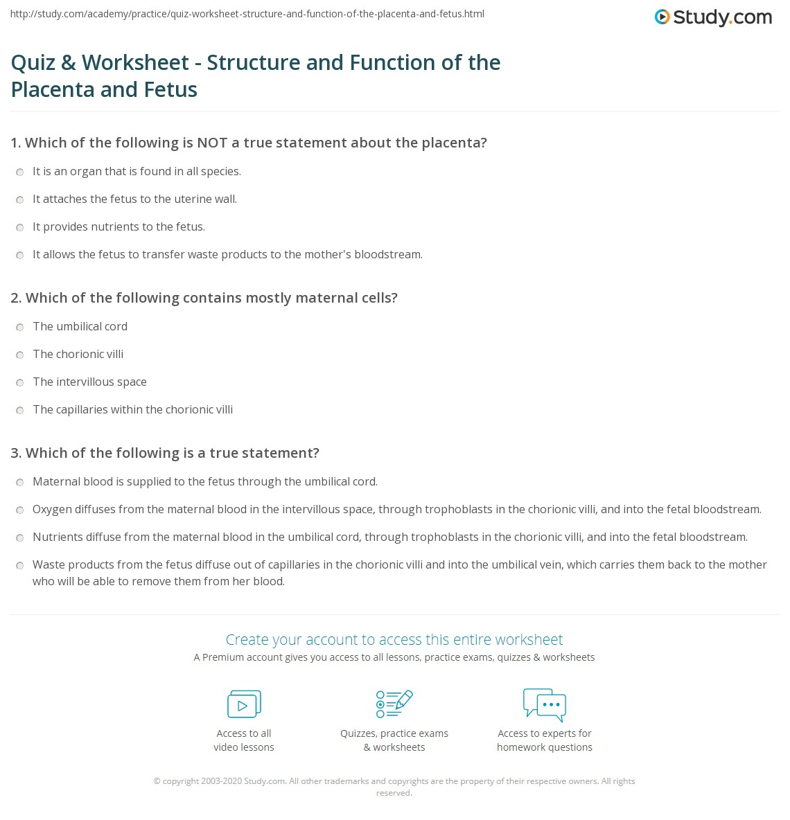 Quiz Worksheet Structure and Function of the Placenta and – Worksheet Function