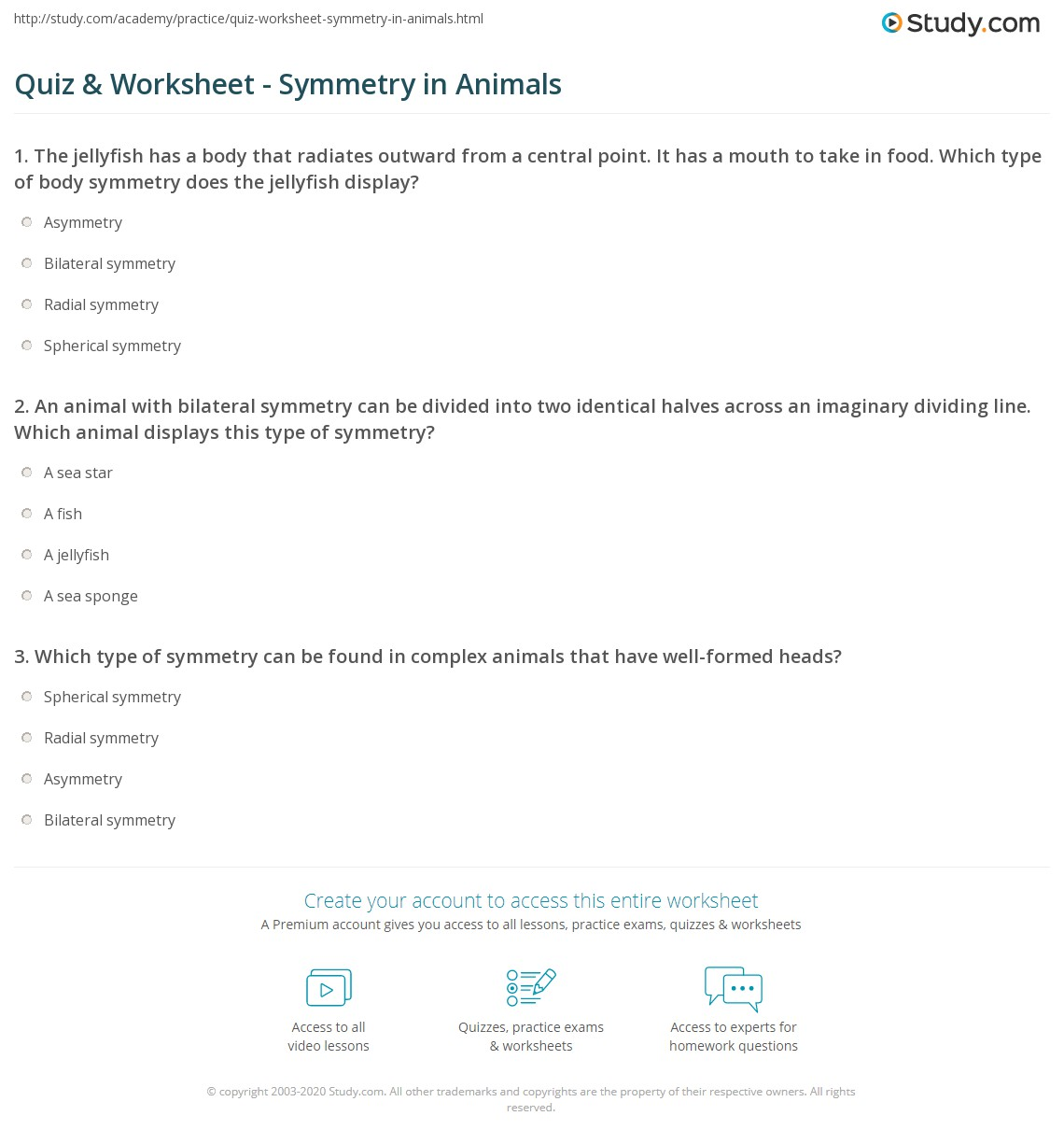 Animal Symmetry Worksheet Answers - Intrepidpath