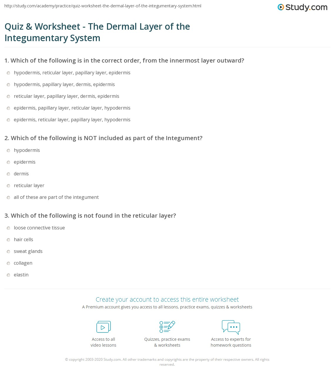 Quiz Worksheet The Dermal Layer of the Integumentary System – Integumentary System Worksheets