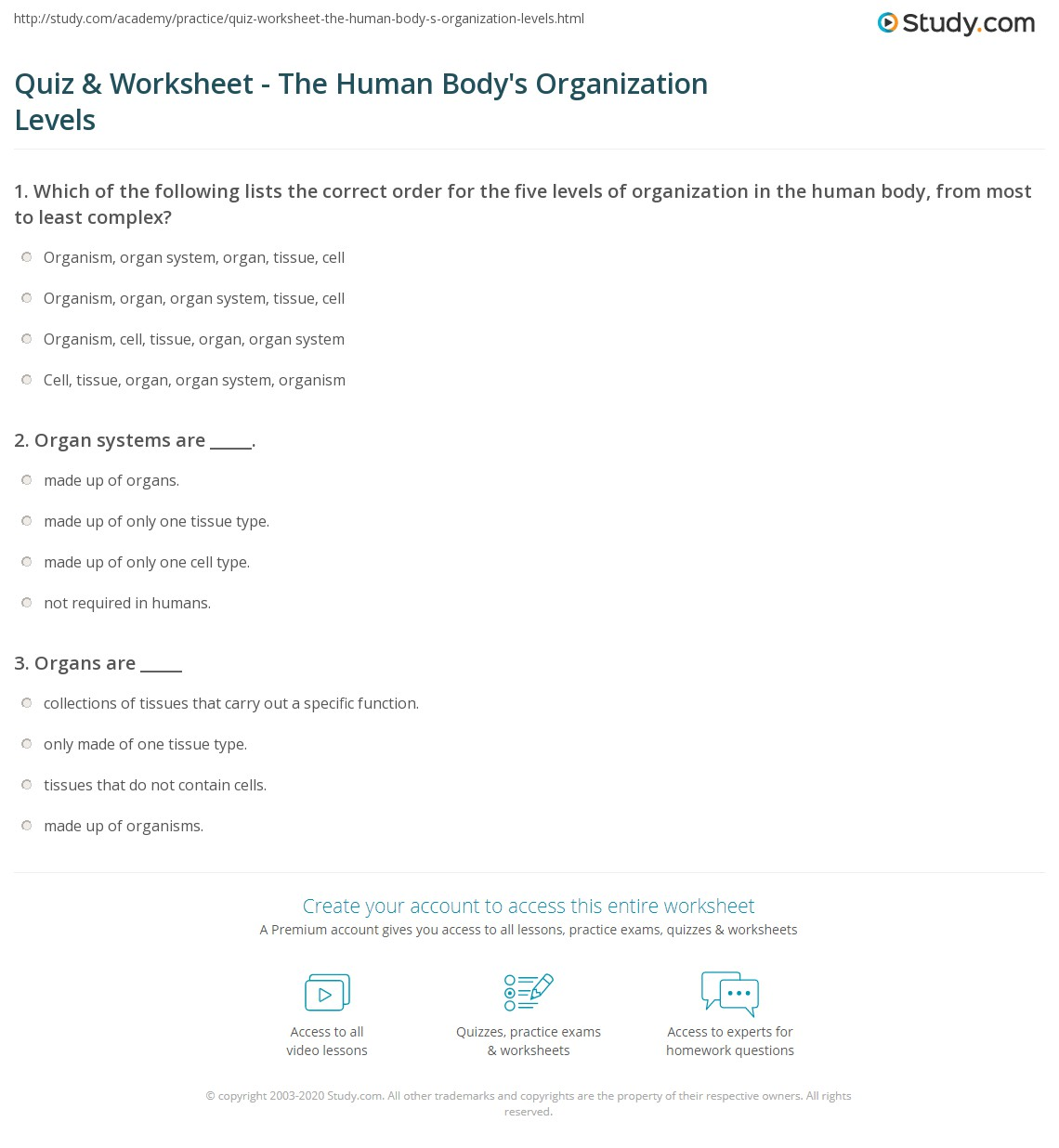 Quiz Worksheet The Human Bodys Organization Levels – Levels of Organization Worksheet