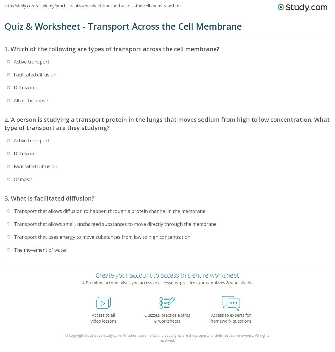 Quiz Worksheet Transport Across the Cell Membrane – Cell Transport Worksheet Answer Key