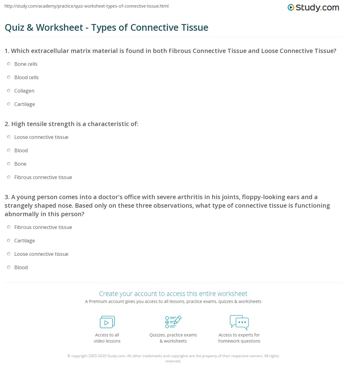 {Quiz Worksheet Types of Connective Tissue – Connective Tissue Worksheet