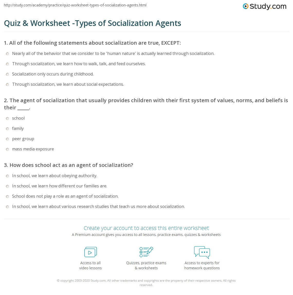 questions on socialization essay questions on socialization