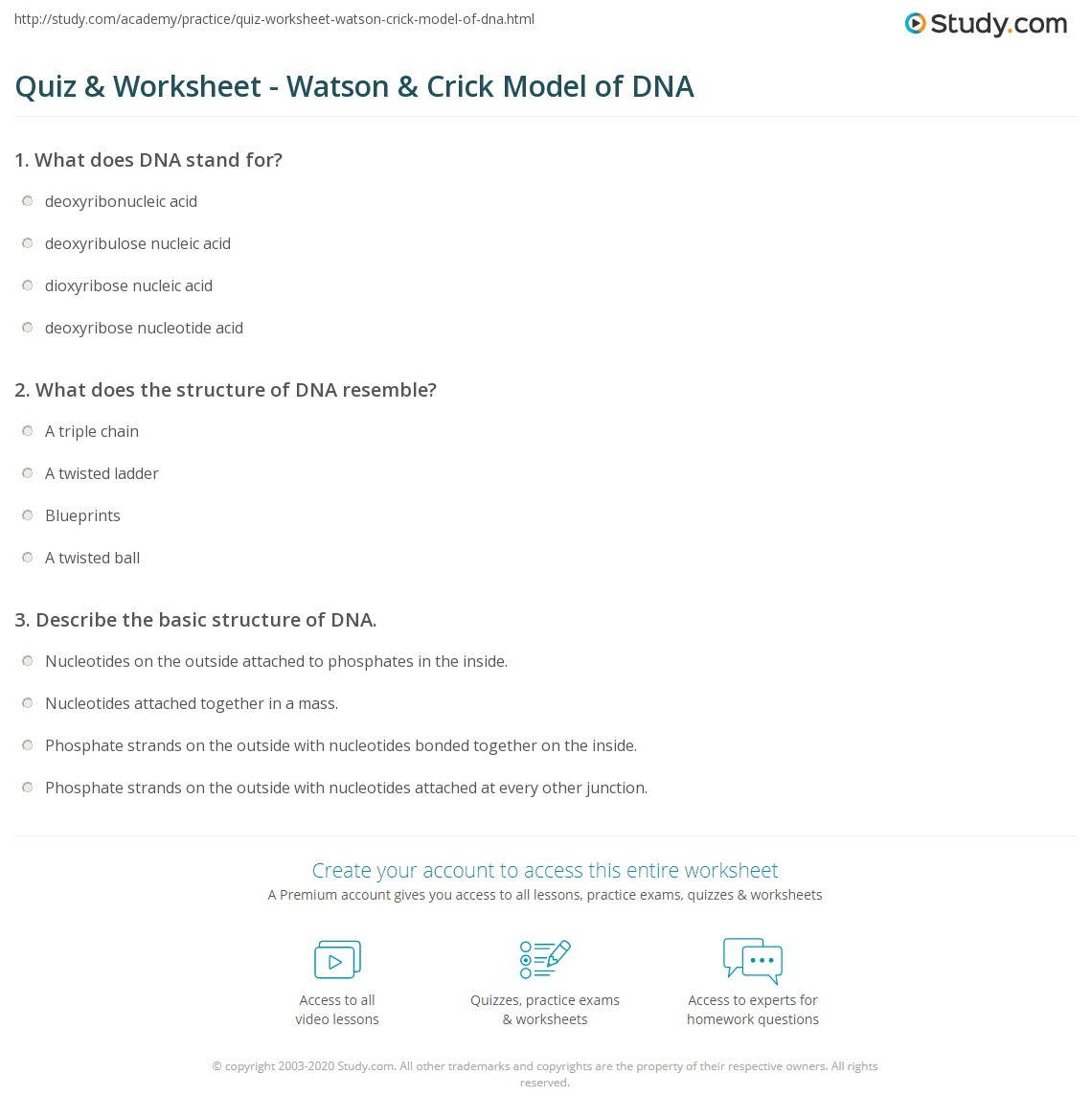 Quiz Worksheet Watson Crick Model of DNA – Dna the Double Helix Worksheet