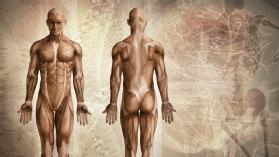 ScienceFusion The Human Body: Online Textbook Help