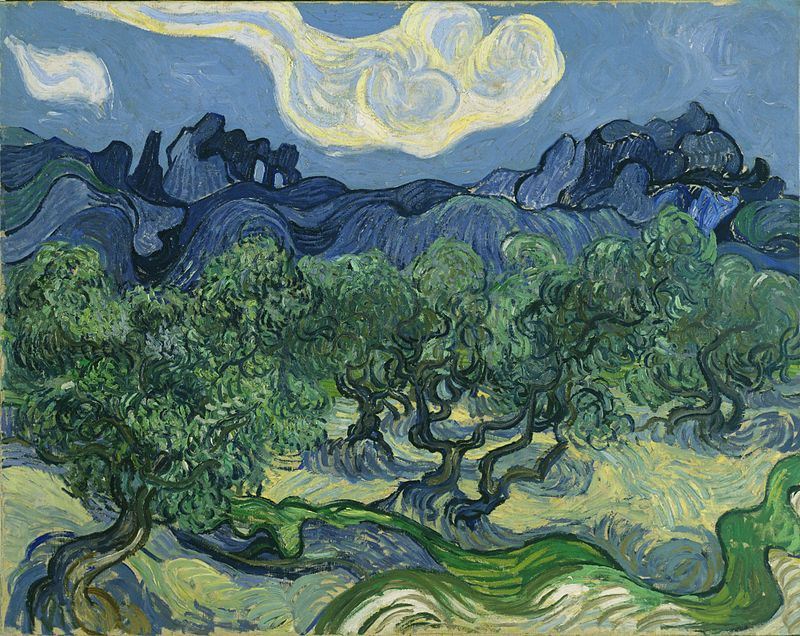 Vincent Van Gogh Used An Analogous Color Scheme Blues And Greens To Create The Olive Trees