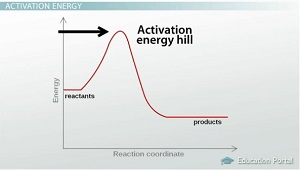 Activation Energy and Catalysts - Video & Lesson Transcript ...