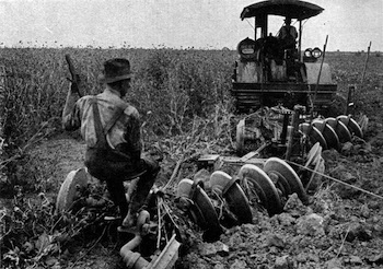 Literary essay on the grapes of wrath