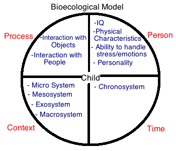 bioecological systems In addition to being known as the ecological systems theory, this approach is also known as the bioecological systems theory to help further emphasize the definition.