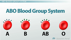 Blood type #