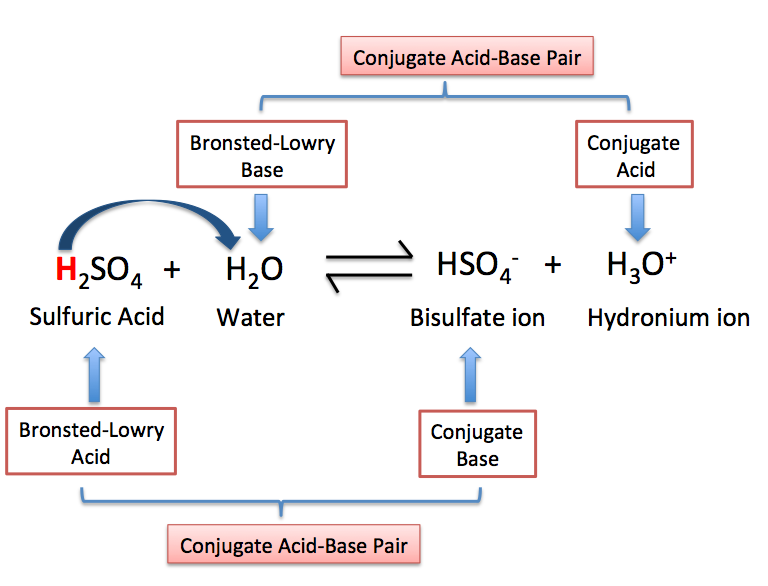 BronstedLowry Base Definition Examples Video Lesson – Acid Base Reactions Worksheet