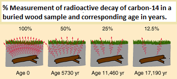 What is the definition of radiocarbon dating