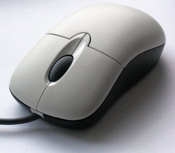 input devices and their uses Computers exist in many digital devices that we use on a day-to-day basis digital devices may be input, output or storage devices on a basic level, they all operate through the use of.