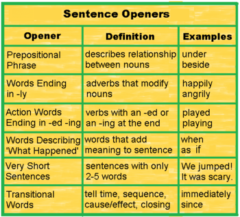 types of essay openers