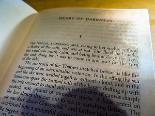 heart of darkness lit journal essay Heart of darkness is conrad's representative work which explores the heart as  well  civilization and also reveals the darkness, complexity and fallacy of human .