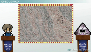 Igneous Rock Granite