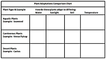 plant adaptations lesson plan. Black Bedroom Furniture Sets. Home Design Ideas