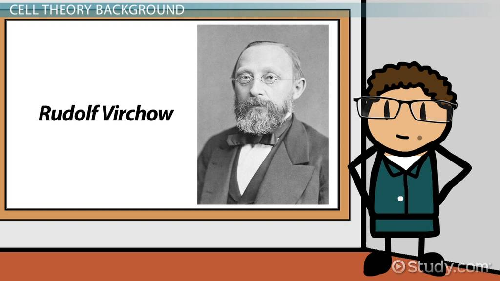 Rudolf virchow discovery, cell theory & contributions video cell theory notes pdf rudolf virchow known for rudolf virchow cell theory timeline
