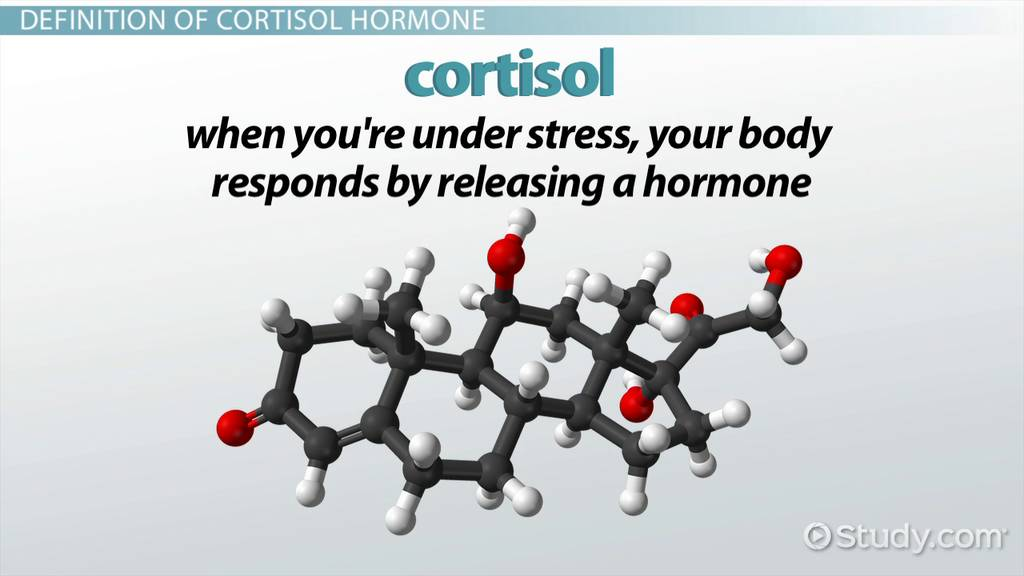 what is cortisol hormone