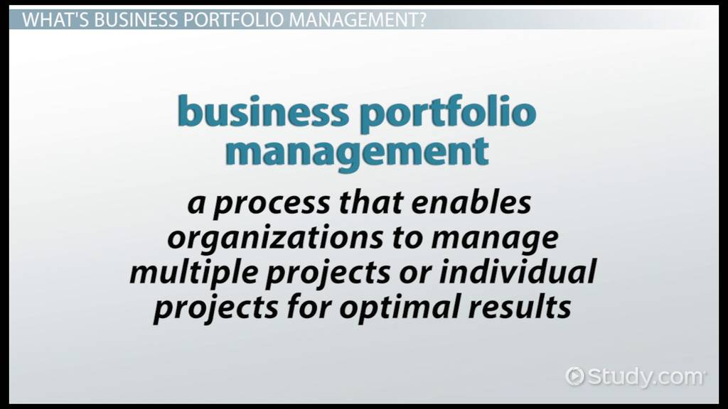 business portfolio management  definition  u0026 example