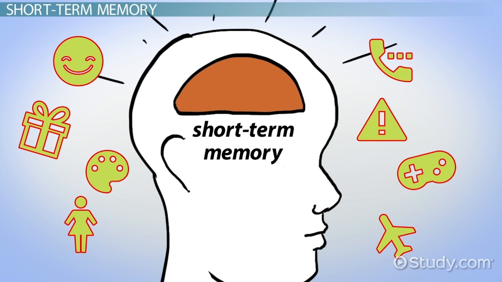 Atkinson Shiffrins Modal Model Of Memory Video Lesson