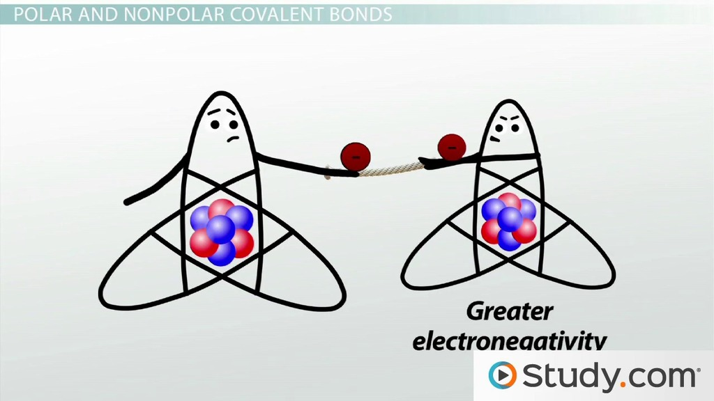 polarity and electronegativity relationship